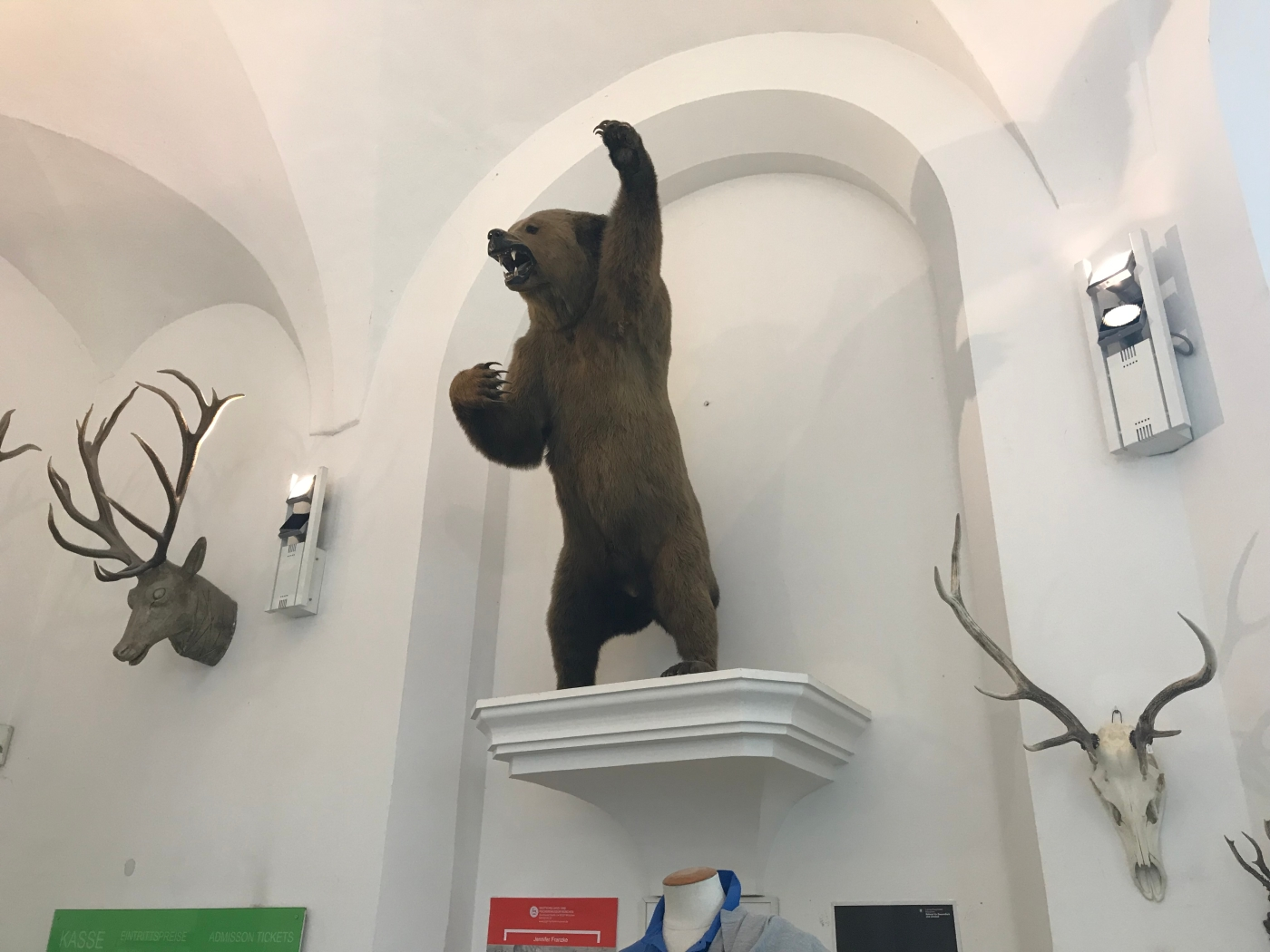 Stuffed Bear - German Hunting and Fishing Museum - Munich - Germany - Wahlmünchnerin
