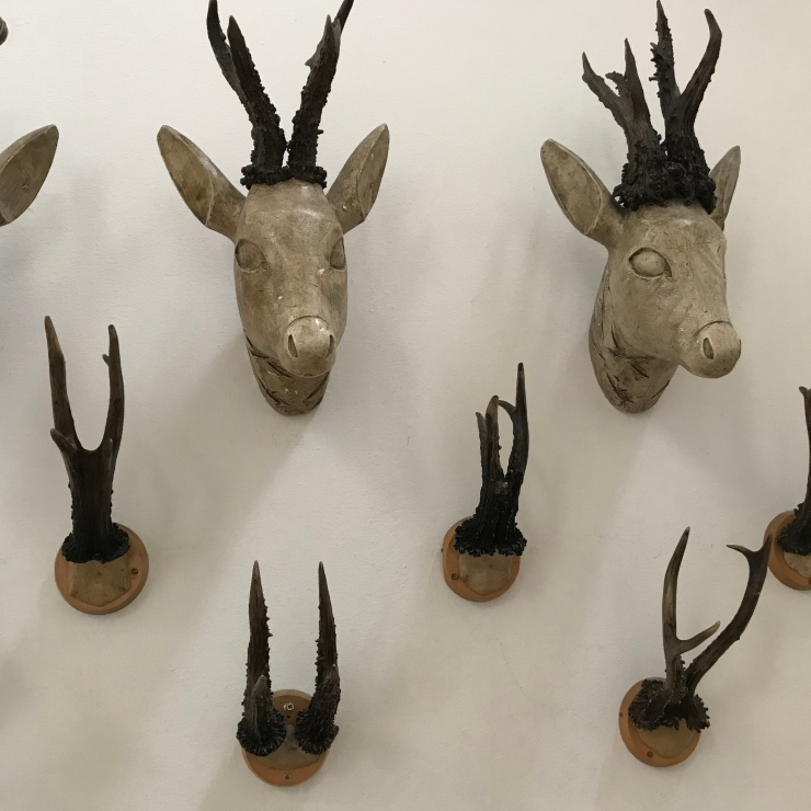 Antlers at the German Hunting and Fishing Museum in Munich - Wahlmünchnerin