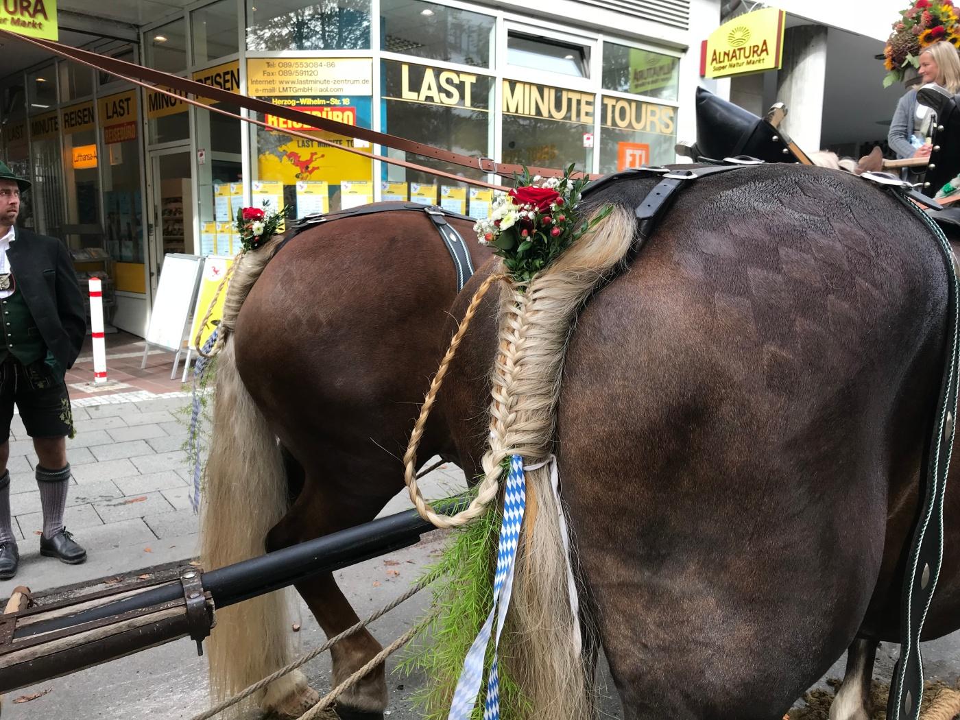 Einzug der Wiesenwirte - Oktoberfest 2018 - Fancy Braided Horse Tails - Wahlmuenchnerin